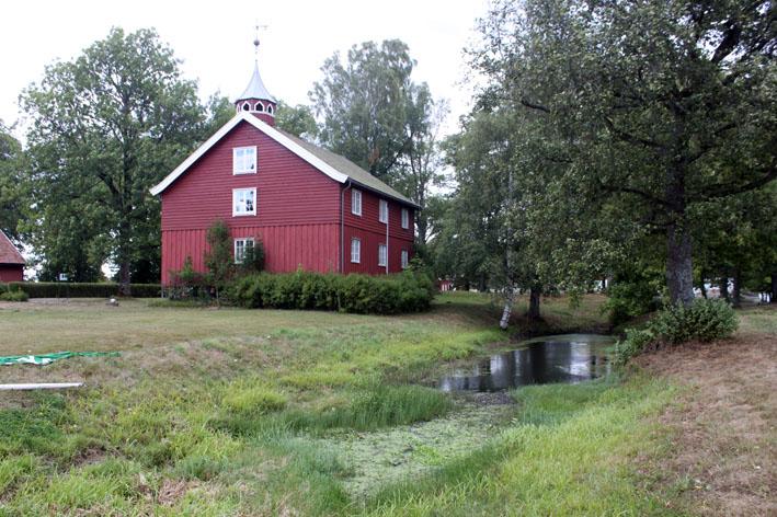 Mosquito larval breeding site, Norway